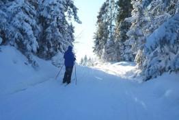 Nowy Targ Atrakcja Narciarstwo biegowe Długa Polana