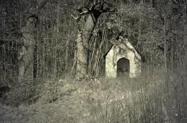Gdynia Atrakcja Escape room Domek na Skraju Lasu