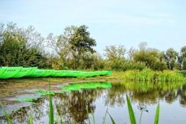 Przybyszew Atrakcja Spływ kajakowy Pilicowo