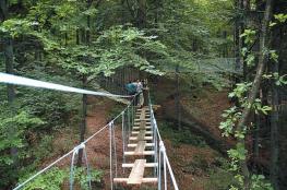 Złoty Stok Atrakcja park linowy Skalisko