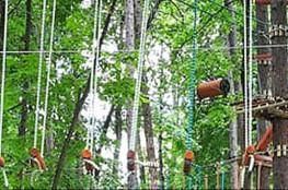 Zwierzyniec Atrakcja park linowy  PARK LINOWY ZWIERZYNIEC - LEMUR PARK