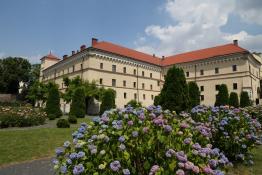 Kraków Atrakcja Muzeum Muzeum Archeologiczne