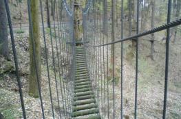Złoty Stok Atrakcja park linowy Park linowy Skalisko
