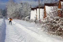 Tylicz Atrakcja Szkoła narciarstwa biegowego Studio Sport