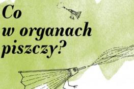 Warszawa Wydarzenie Koncert Co w organach piszczy?
