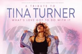 Toruń Wydarzenie Koncert Tribute to Tina Turner