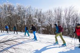 Krynica-Zdrój Wydarzenie Sylwester Sylwester ze Skitour School