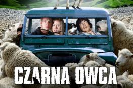 Krynica-Zdrój Wydarzenie Film w kinie CZARNA OWCA