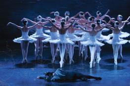 Białystok Wydarzenie Taniec MOSCOW CITY BALLET - JEZIORO ŁABĘDZIE