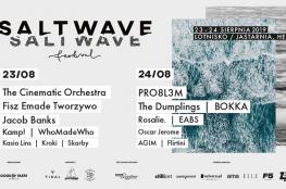 Jastarnia Wydarzenie Festiwal Salt Wave Festival 2019