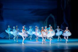 Bydgoszcz Wydarzenie Taniec Jezioro łabędzie - Ukrainian Classical Ballet