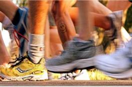 Alwernia Wydarzenie Bieg X Półmaraton Szakala dookoła Lasu Łagiewnickiego
